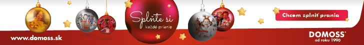 Domoss Vianoce